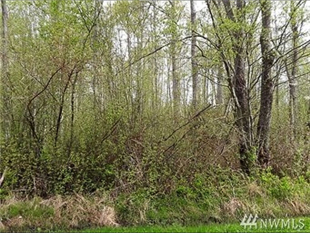 Bellingham Homesite for Sale
